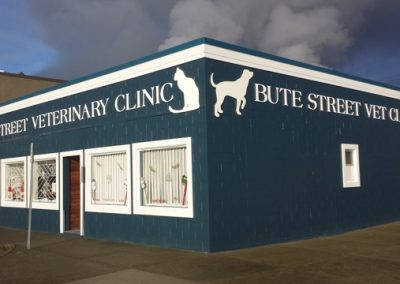 Bute Street Veterinary Clinic
